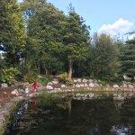The Pond - Fitzgerald Park, Cork