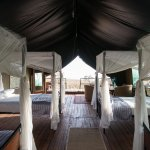 Big and specious tented camps