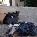 garbage in front of villa: Flies, pests and smell !