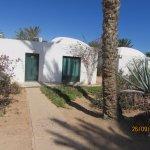Le bungalow dans la palmeraie