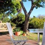 Zebra Garden Suite, views into garden
