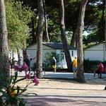 Photo of Camping Le Village du Suroit