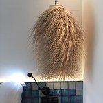 Lamp Shade or wig!