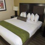 Best Western Plus Plaza Hotel Photo