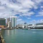 Viaduct Harbour Foto