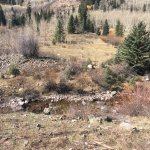 Snowmass Creek Outfittersの写真