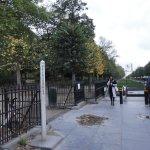 Photo of Parc de Bruxelles