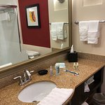 Foto de Holiday Inn Dallas DFW Airport - South