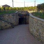 L'entrée de la cave