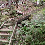 Lots of wooden stairs