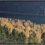 El otoño sobre el Estanque de Sant Maurici