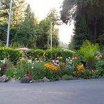 Fern Grove Cottages Foto