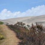 Photo de Sigatoka Sand Dunes National Park