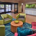 SpringHill Suites Pasadena Arcadia Foto