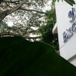صورة فوتوغرافية لـ Biscuit crepes artesanales
