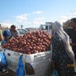 Les oignons vendus en vrac ( marché de Zarzis )