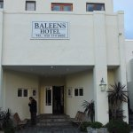 Photo of Baleens