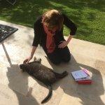 Basile the cat