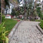 Cottage pathway