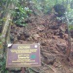 Muddy trail paths