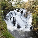 Swallow Falls Foto