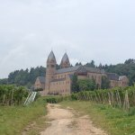 Vineyards and Abbey.
