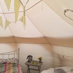 inside Daisy tent