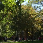 U Penn, autumn day on campus