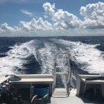 Foto de DNS Diving