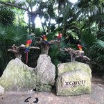Foto de Xcaret Eco Theme Park