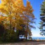 صورة فوتوغرافية لـ Tahoe Beach and Ski Club
