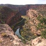 Dolores River canyon below Roc Creek Petroglyphs Trail