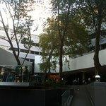 Near pool, outside, lobby level