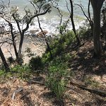 Photo of Noosa National Park