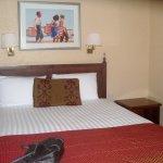 Room 412