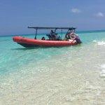 Foto de Palm Cove Watersports