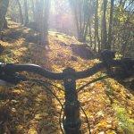 Goms im Herbst - ideal zum Biken