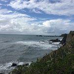 Photo of Cape Foulwind Walkway