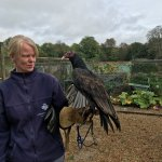 Judith and Kevin, the Turkey Vulture
