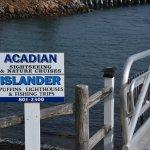 Photo of Acadian Nature Cruises
