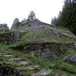 Iwamura Castle