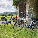 Vélo Pont d'Arc