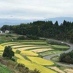道の駅の周辺は、収穫真っ盛りの黄金の稲の棚田