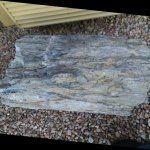 Huge pieces of petrified wood around th e property