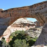 Photo of Natural Bridges National Monument