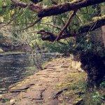 Zdjęcie Fleming's White Bridge - Caravan & Camping Park