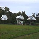 Photo of University of Florida Bat House