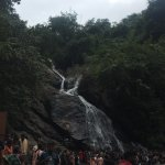Good place to visit  Please visit before 4 pm. Plan along with azhiyar dam as it is nearby.   A