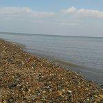 Bilde fra Minster Beach