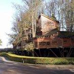 Treehouse Restaurant